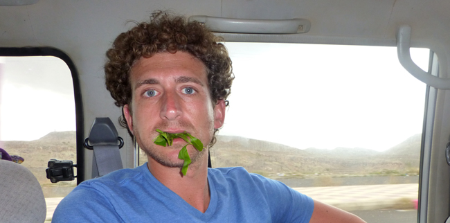 Me Chewing Qat in Yemen