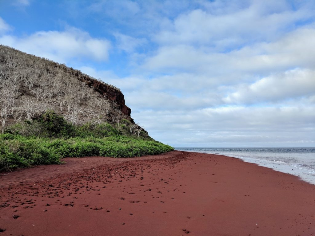 Galapagos Trip - Red Beach