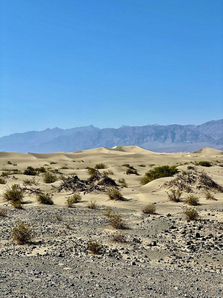 Mesquite Sand Dunes Death Valley